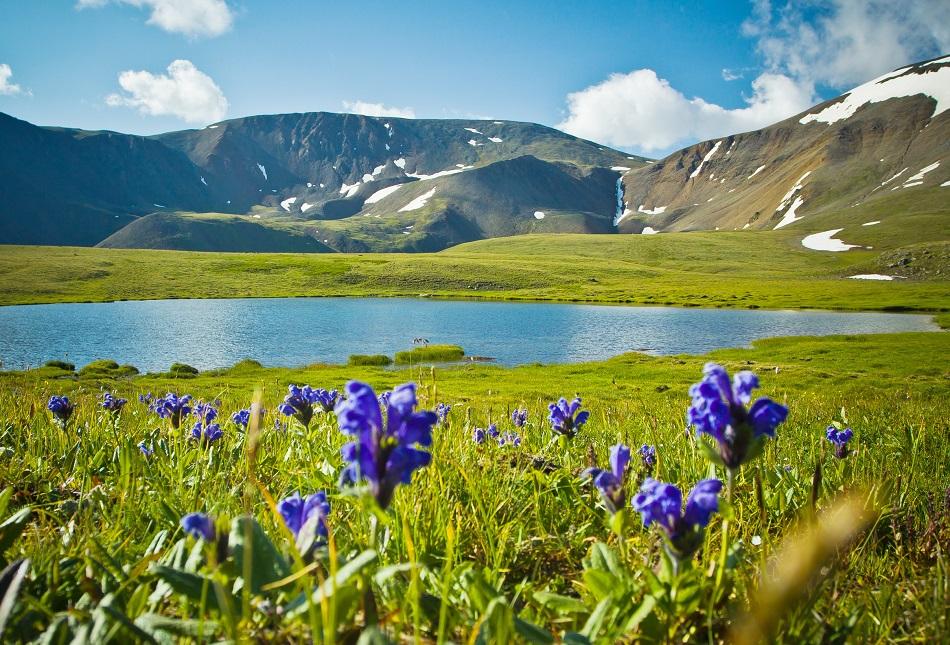 Das Altaj-Gebirge ist auch heute noch eine sehr reine Region