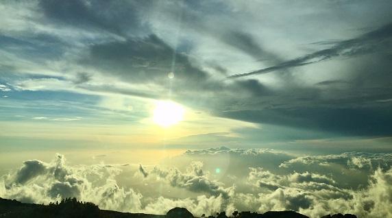 Sonnenuntergang aus Hawaii - Ronald Ivarsson besucht Hawaiian Spirulina
