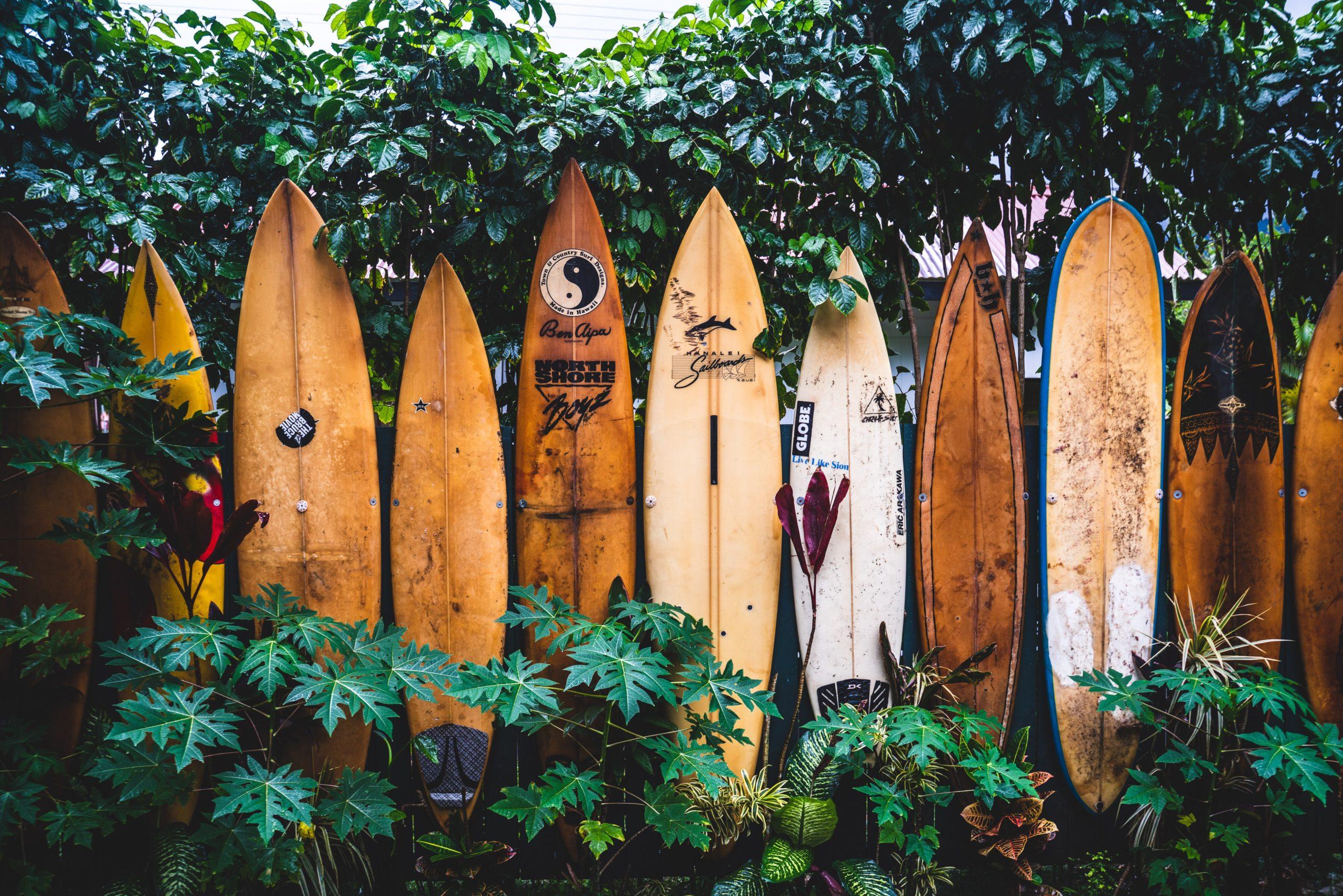 Hawaii Surfbretter